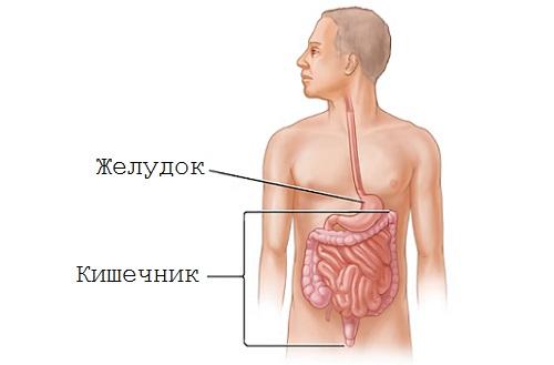 ротавирусный