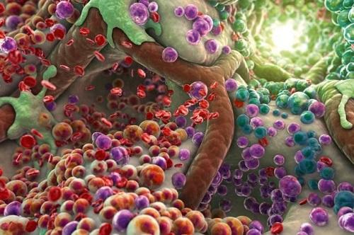 Токсины в крови