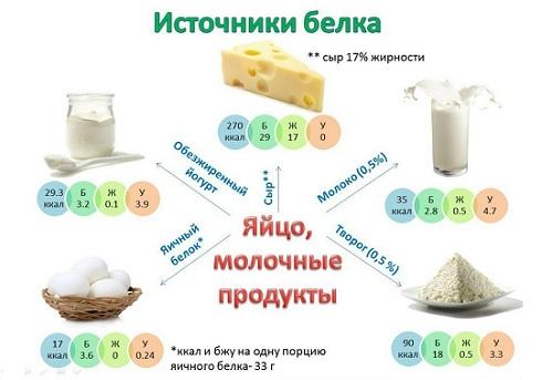 Творог источник белка