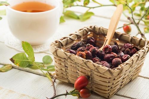 отвар из плодов шиповника