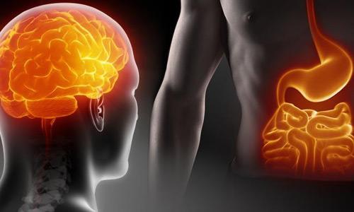 Связь нервов и ЖКТ