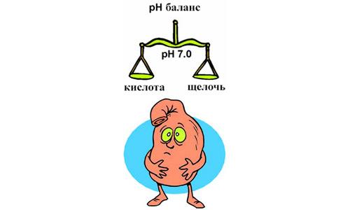 баланс кислотности в желудке