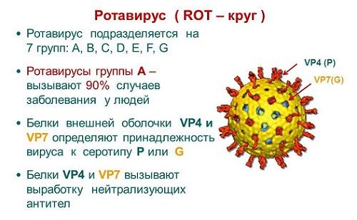вирусный энтерит