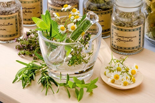 травы для лечения