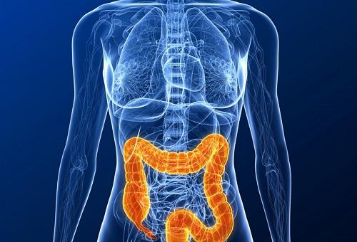Патологии кишечника
