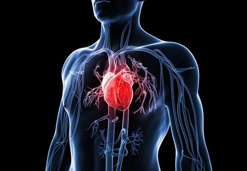 Заболевания сердца